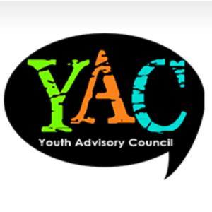 Barry County MI Youth Advisory Council logo